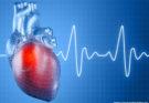 Healthy Heart For Women